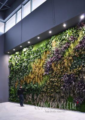 Tableaux murs v g taux naturels artificiels stabilis s sans entretien - Mur vegetal exterieur sans entretien ...