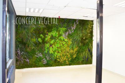 Tableaux murs végétaux naturels artificiels stabilisés sans entretien