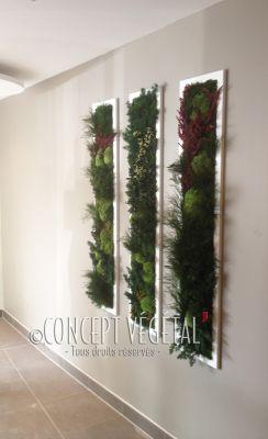 Tableaux murs végétaux naturels artificiels stabilisés sans entretien 01a7cc119c3